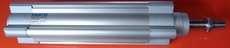 Cilindro pneumático (modelo: DSBC32-100-D3-PPVA-N3)