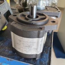 Bomba hidráulica (modelo: PGE102450RIW1N3700)